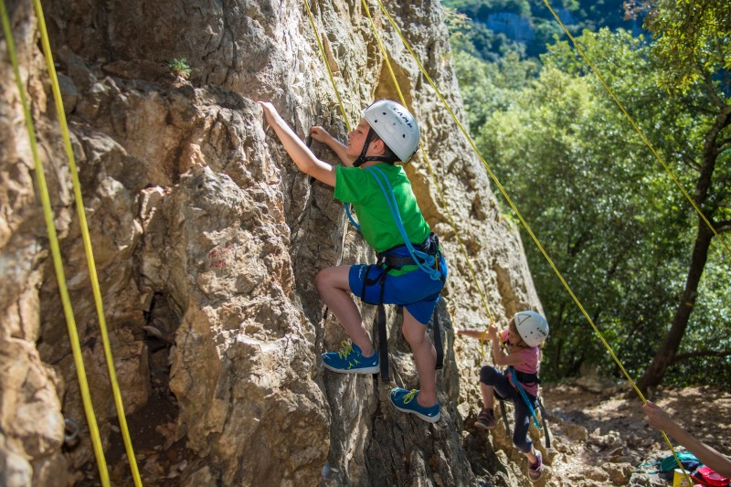 Climbing, Tree climbing