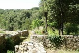 Arc' Avene